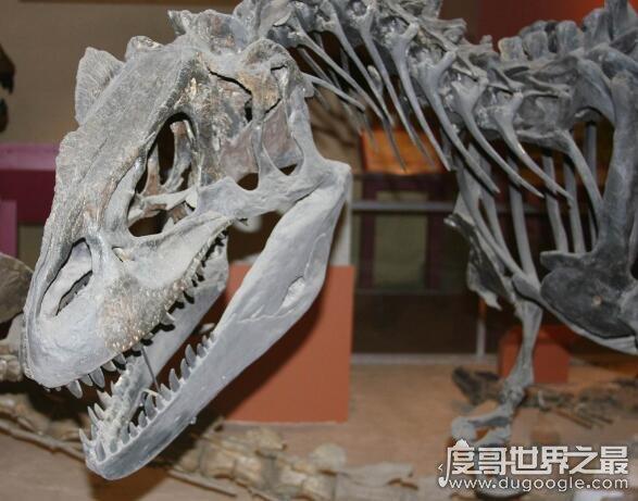 地球史上最大的恐龙,易碎双腔龙体重比蓝鲸还要大(长达35米)