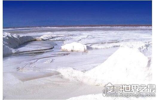 长芦盐场 我国最大的盐场,长芦盐场的产盐量占全国总产量四分之一