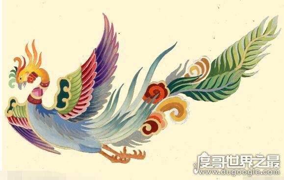世界上最后一只凤凰,有人在黑龙江拍到凤凰(羽毛清晰可见)
