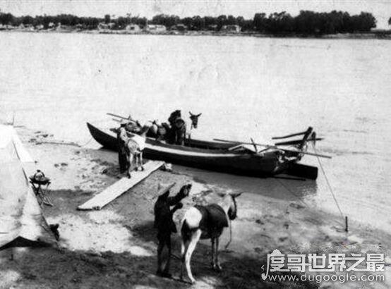 1965年黄河巨龟事件,巨龟比卡车还大?(当事人后代口述)
