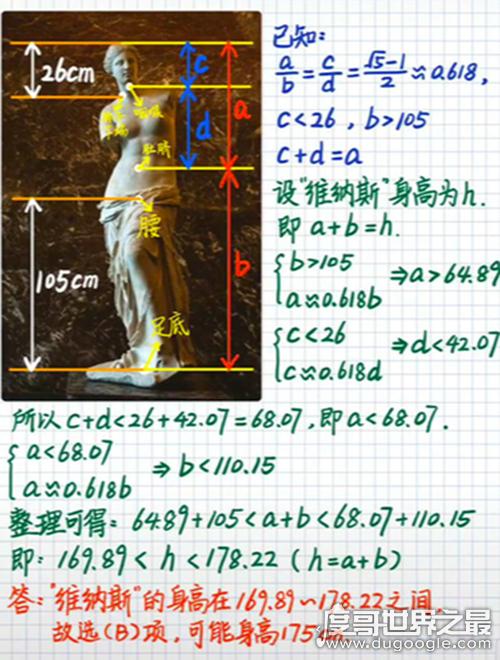 断臂维纳斯有多高,全长2.04米(身高符合黄金分割比例)