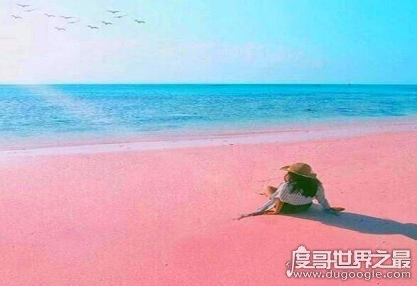 世界上最性感的海滩,粉色沙滩(一个让你少女心炸裂的地方)