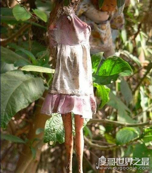 世界上最恐怖的岛,墨西哥娃娃岛(花匠与鬼魂的传说)