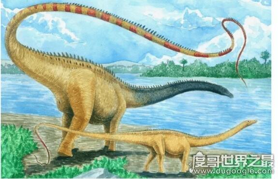 史上最大的恐龙盘点,易碎双腔龙最大能超过80米/220吨重