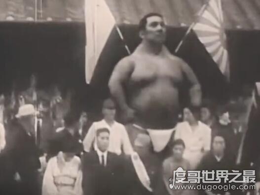3米10的日本巨人真假,巨人身材庞大却行动自如(附视频)