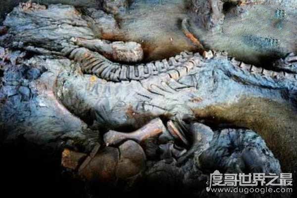 汶川地震看到龙 汶川地震看到龙,有人说是真龙飞天有人说龙脉死亡