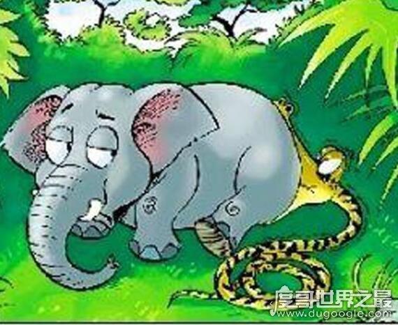 人心不足蛇吞象是什么意思,比喻人太贪心(欲望总是得不到满足)