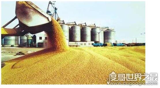 中国四大米市是哪里,分别是九江、无锡、芜湖、长沙或沙市
