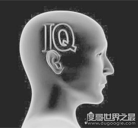 人的智商多少算正常,90-110(世界上智商最高的人IQ达350)
