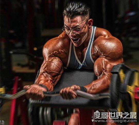 中国第一肌肉男,鹿晨辉(首个获得健美黄金联赛冠军的中国人)