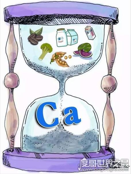 含钙高的食物有哪些,钙含量最高的食物排行榜(首选虾皮经济又实惠)