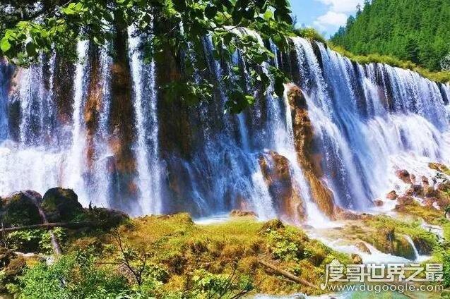 中国最宽的瀑布,九寨沟诺日朗瀑布(震后两年再开放比震前更壮观)