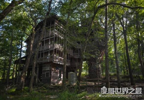 世界上最大的树屋,瑞典树上酒店树屋被烧毁(53平米/可住6人)