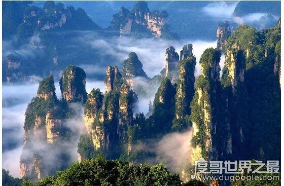 中国最大的森林公园排名,莫尔道嘎森林公园222万亩排第一