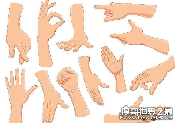 干巴爹是什么意思,是日语音译加油的意思(用于比较亲密的人之间)