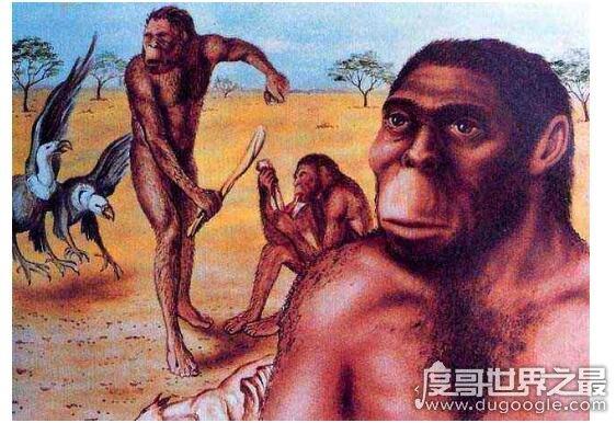 世界上最早的人类诞生于什么时候,南方古猿生存在550万年前
