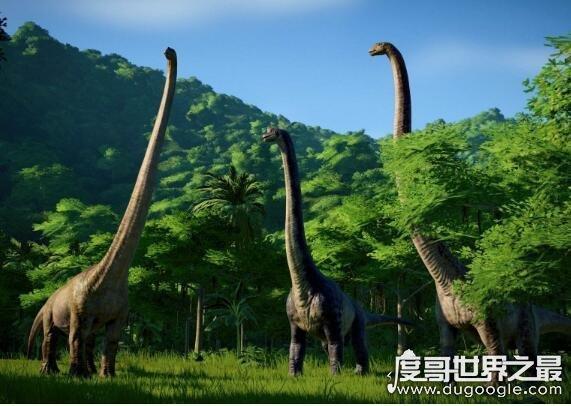 盘点在恐龙时代的五大恐龙之最,其中最笨的恐龙是剑龙