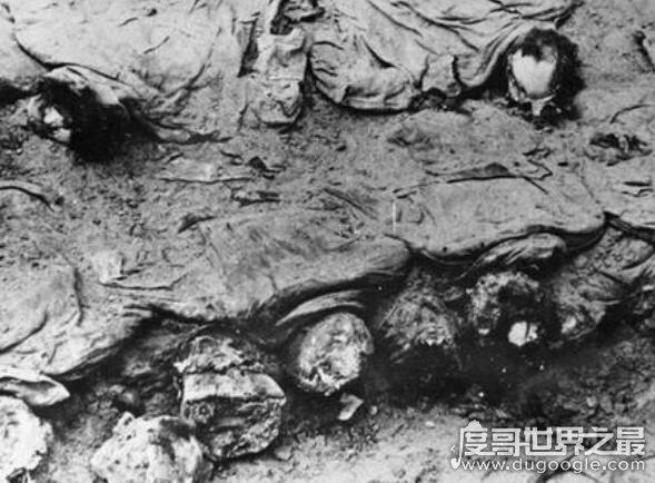 二战时期卡廷惨案真相揭秘,2.2万波兰军人遭到苏联屠杀