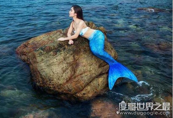 美人鱼属于鱼类吗,美人鱼是一种海洋草食性哺乳动物