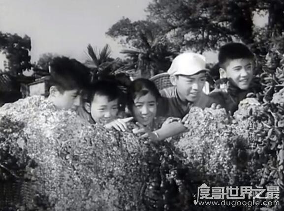共產兒童團歌出自哪個電影,影片《紅孩子》的主題曲(1958年上映)