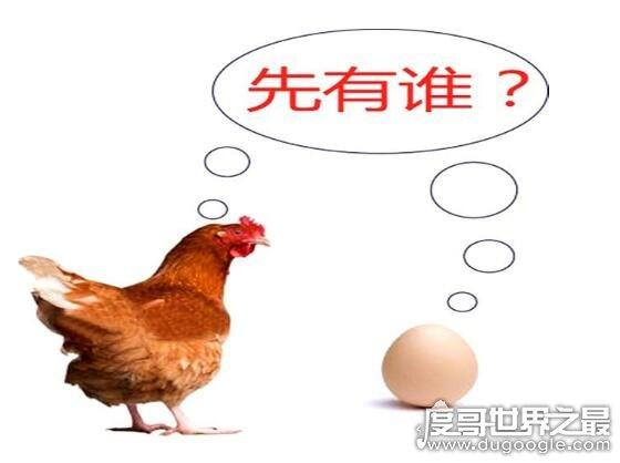 是先有鸡还是先有蛋正确答案公布,经过科学研究论证发现是先有鸡