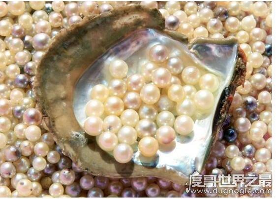 珍珠为什么就是和水元波也大�笑了出�沓ぴ诒纯抢铮�珍珠是贝类被外物入侵后分泌形成的东西