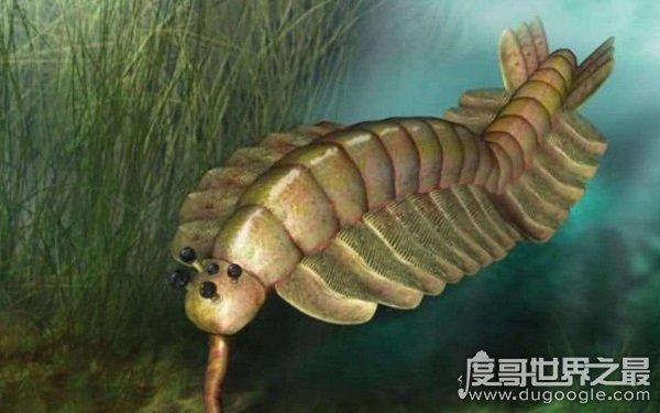 十大远古最恐怖的动物,体积庞大凶猛无比(现已灭绝)