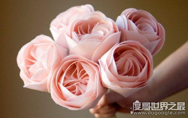 世界上最贵的十种花是哪些,朱丽叶玫瑰世界最贵(售价2695万元)